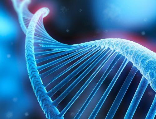 La riprogrammazione cellulare nell'era della medicina quantistica