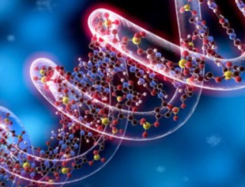 Epigenetica, cancro e ambiente